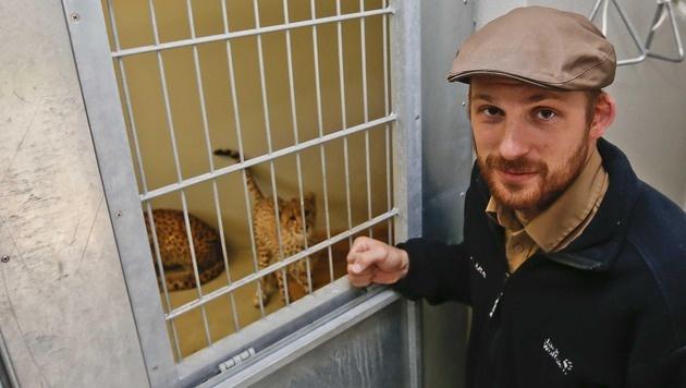 Salzburgs Zoo investiert erneut in mehr Sicherheit (Bild: MARKUS TSCHEPP)