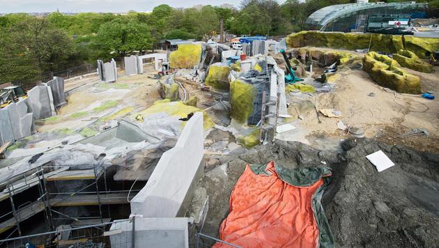 Die Baustelle der Eisbärenwelt im Tiergarten Schönbrunn in Wien. (Bild: APA/DANIEL ZUPANC)