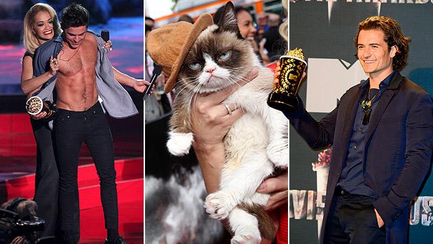 "Promis, goldenes Popcorn und die ""Grumpy Cat"" (Bild: APA/EPA/MICHAEL NELSON, Matt Sayles/Invision/AP)"
