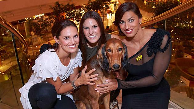 """Tanja Duhovich, Elke Lichtenegger, Hund """"Frederick"""", Fabienne Nadarajah am Welt-Tierschutztag 2012 (Bild: Alexander Tuma)"""