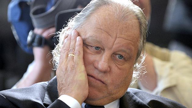 Kartnigs Beschwerdebrief ging bei Behörde unter (Bild: APA/Hans Klaus Techt)