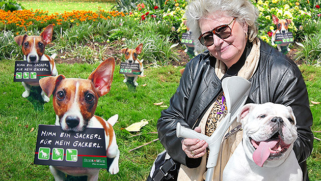Streit um Hundekot: Mann attackiert Gehbehinderte (Bild: Klemens Groh, APA/MARTIN FICHTER, krone.at-Grafik)