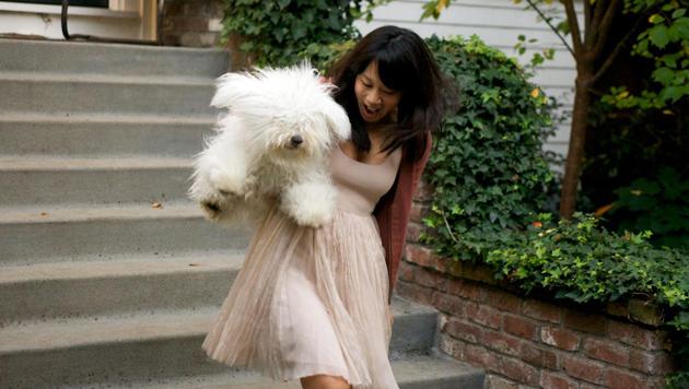 Warum gehen, wenn man sich tragen lassen kann? Beast mit Frauchen Priscilla Chan. (Bild: facebook.com/beast.the.dog)
