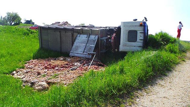 NÖ: Mit Tierkadavern beladener Lkw verunglückt (Bild: Einsatzdoku.at)
