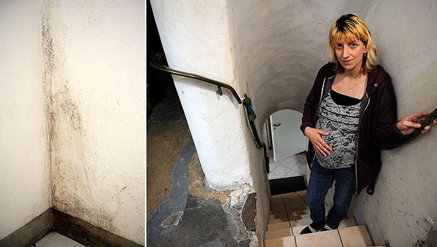 Hochschwangere nach Schimmel-Martyrium im Spital (Bild: Imre Antal)