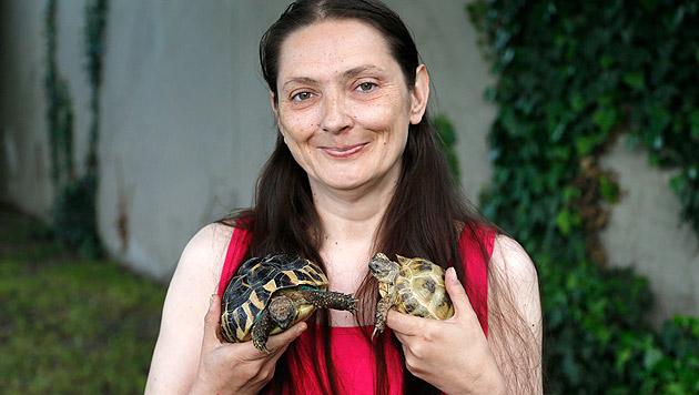 Sabine Mantl ist überglücklich, dass ihre beiden Schildkröten am Leben sind. (Bild: Zwefo)