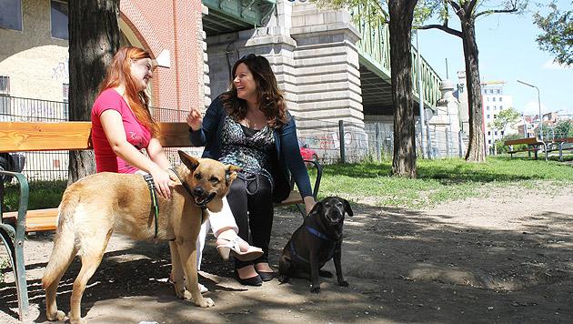 So verhalten Sie sich in der Hundezone richtig (Bild: Vier Pfoten/Elisabeth Blum (Symbolbild))