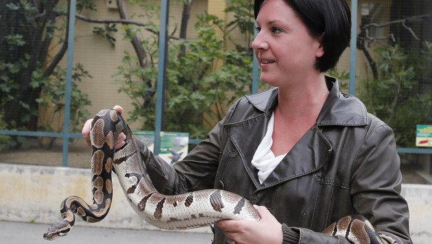 """""""Krone""""-Reporterin Sandra Ramsauer hilft beim Verpacken der """"Schmuggelware"""". (Bild: Zwefo)"""