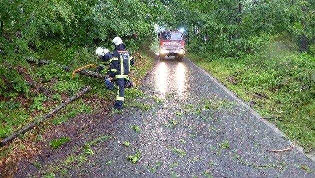 Man möchte es kaum glauben, dass manchen Menschen die Einsätze unserer Freiwilligen zu laut sind! (Bild: LFV Steiermark)
