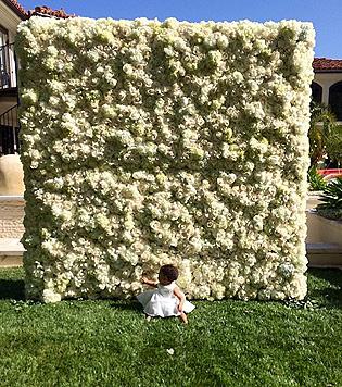 Eine Blumenwand zum Muttertag für Kim Kardashian. (Bild: Instagram.com)
