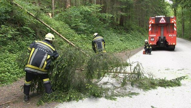 """Sturm """"Yvette"""" fegte sogar Auto von der Straße (Bild: Einsatzdoku.at)"""