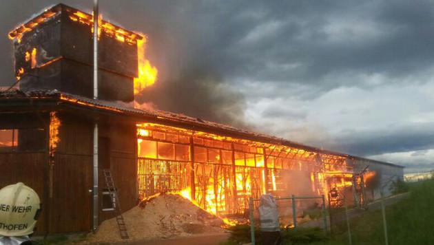 Großbrand wütete in Kärntner Zimmereibetrieb (Bild: APA/FF-ALTHOFEN.AT)