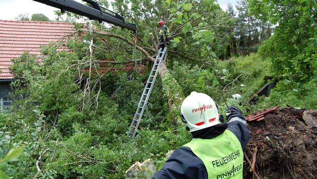"""Hochwasser: """"Das Schlimmste haben wir überstanden"""" (Bild: APA/WWW.FEUERWEHR-PINKAFELD.AT)"""