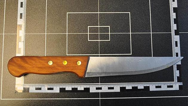 Wien: Streit um 20 Euro endet mit Messerstich (Bild: Polizei)