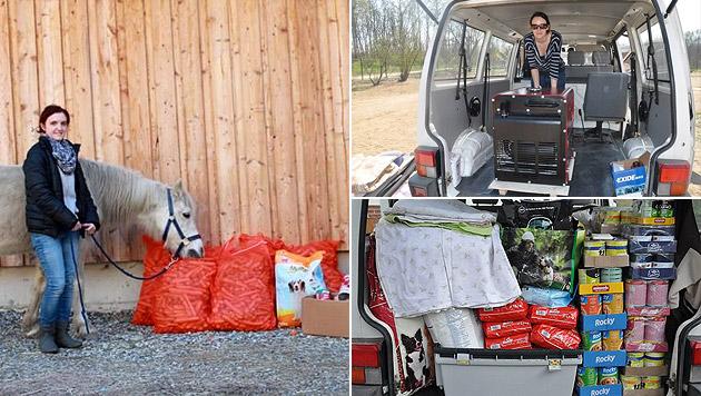 """Tamara Treitler und das """"Nino""""-Team sammeln unermüdlich Spenden für Tiere im In- und Ausland. (Bild: TSV Nino)"""