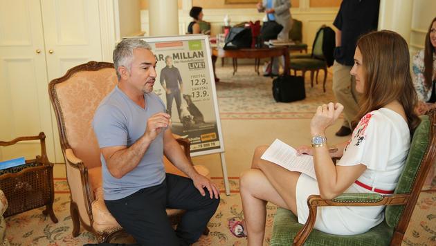"""""""Krone""""-Tierexpertin Maggie Entenfellner traf US-Star Cesar Millan zum Interview. (Bild: Peter Tomschi)"""