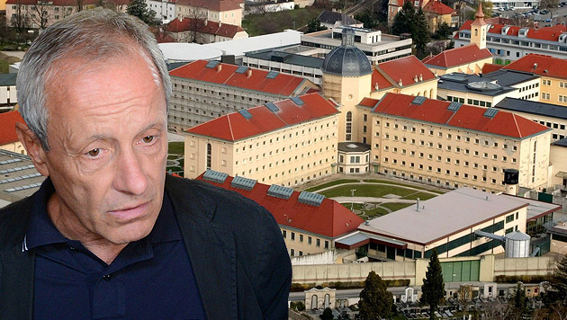 Grüner Coup: U-Ausschuss zu Strafvollzug fix (Bild: APA/HELMUT FOHRINGER, APA/GERALD LECHNER/www.fotoprofis.at)