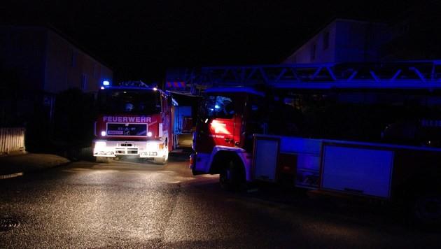 Mann springt bei Wohnungsbrand in NÖ aus Fenster (Bild: Presseteam der Feuerwehr Wiener Neustadt)