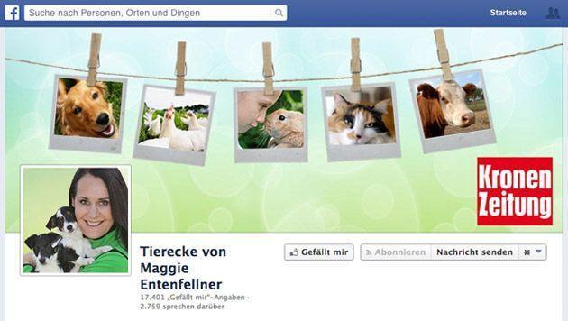 Die Tierecke nun auch auf Facebook - Fan werden! (Bild: krone.at-Grafik/Screenshot Facebook)