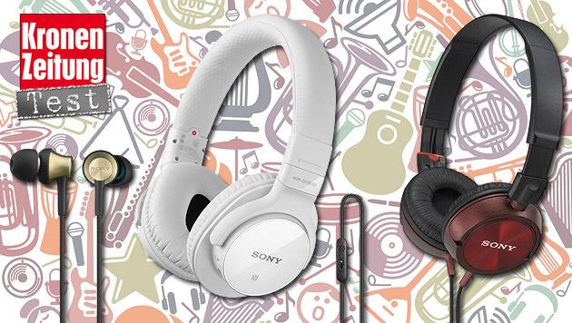 Drei Sony-Kopfhörer für jeden Geldbeutel im Test (Bild: thinkstockphotos.de, Sony, krone.at-Grafik)