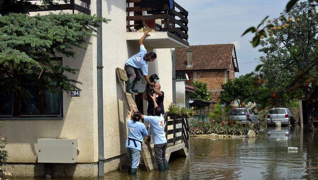 Tierschützer helfen nach Balkan-Hochwasser (Bild: Vier Pfoten/Mihai Vasile)