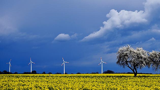 Das Aprilwetter geht auch im Juni weiter (Bild: dpa/Patrick Pleul)