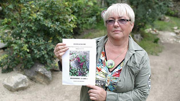 Vida Hochleitner platzierte Suchblätter im Tiergarten und setzte eine Belohnung von 1.600 Euro aus. (Bild: Gerhard Bartel)