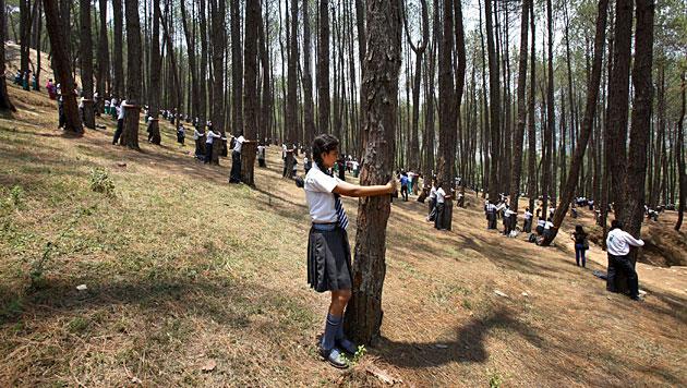 Nepalesen stellen Weltrekord im Bäume-Umarmen auf (Bild: AP)