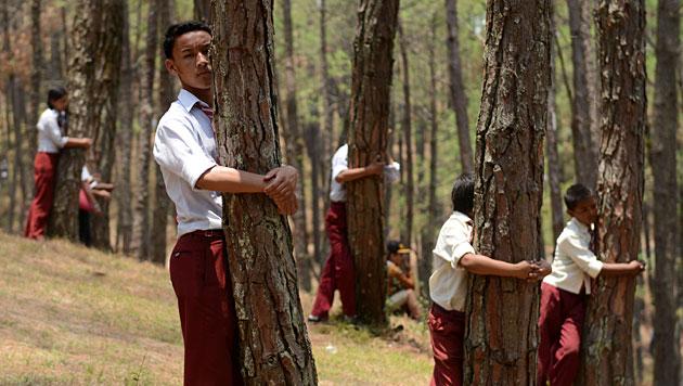Nepalesen stellen Weltrekord im Bäume-Umarmen auf (Bild: AFP)
