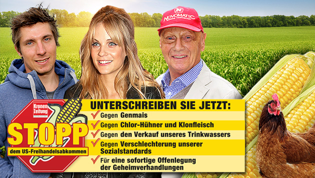 Auch Stars wie Marcel Hirscher, Mirjam Weichselbraun und Niki Lauda unterstützen die Initiative. (Bild: thinkstockphotos.de, Groh, Tomschi, Bissuti, krone.at-Grafik)