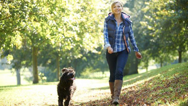 Die Qual der Wahl des richtigen Hundesitters (Bild: thinkstockphotos,de)