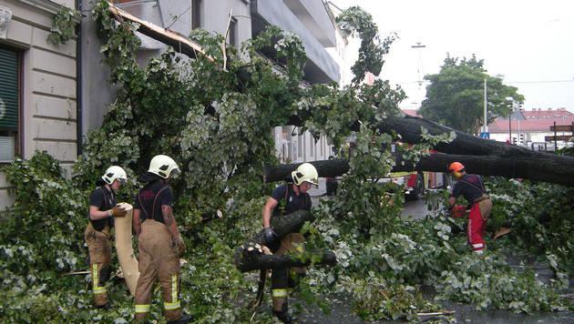 Baum auf 2 Wohnhäuser gestürzt: Balkone demoliert (Bild: APA/BERUFSFEUERWEHR GRAZ)