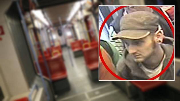 Wiener (65) in U1-Station brutal verprügelt (Bild: APA/GEORG HOCHMUTH, Polizei)