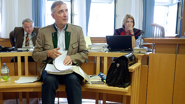 """Paintball-Affäre"": Ewald Stadler nun vorbestraft (Bild: APA/Georg Hochmuth)"