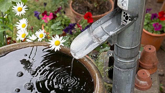 wasser sparen garten trocken – sweetmenu, Garten und Bauten