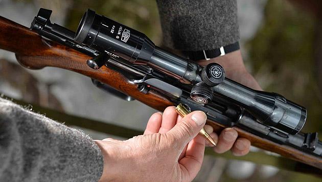 Vier Rehböcke in Kärnten von Wilderer erschossen (Bild: APA/BARBARA GINDL)