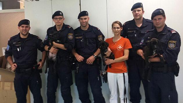 Die tierlieben Retter in Uniform brachten die Welpen zum Wiener Tierschutzverein. (Bild: Polizei)