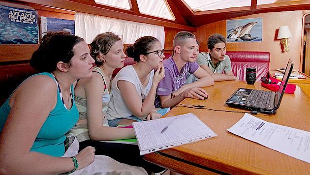 Tierfreunde werden in Italien zu Meeresforschern (Bild: S. Airoldi, Tethys)