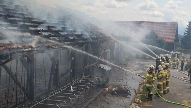 Nach zwei Bränden in Salzburg: Ursachen geklärt (Bild: APA/FMT-PICTURES/MARIO POMWENGER)