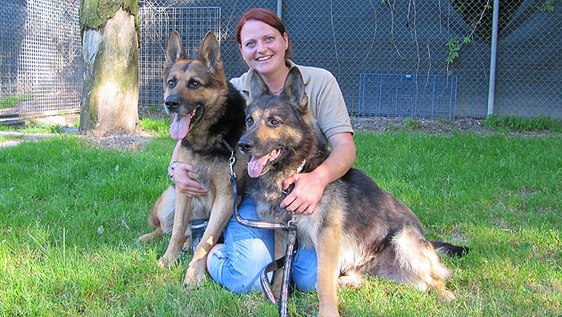 Tierpflegerin Eva mit den Ex-Stars aus dem Zirkus (Bild: Tierheim Linz)