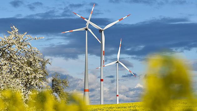 E-Branche will bis 2030 mehr Wind- und Wasserkraft (Bild: APA/dpa-Zentralbild/Patrick Pleul)