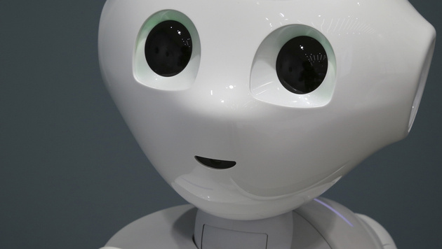 Grazer wollen Robotern räumliches Sehen beibringen (Bild: AP)