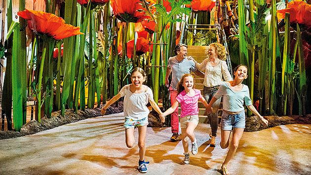 Europa-Park Rust: 24 Stunden im Kinderparadies (Bild: Europa-Park/Andrea Thomas)