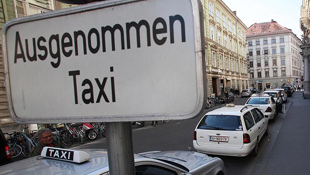 Taxis müssen Hunde nicht transportieren, viele tun es aber. (Bild: Jürgen Radspieler)