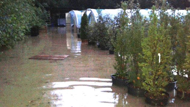 Das überflutete Areal einer Baumschule in der Gemeinde Deutschfeistritz in der Steiermark. (Bild: APA/DIETMAR JANTSCHER (FF DEUTSCHFEISTRITZ))