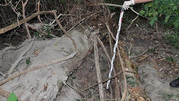 Das Grab in einem Waldstück im Bezirk Simmering war bereits vorbereitet. (Bild: Polizei)