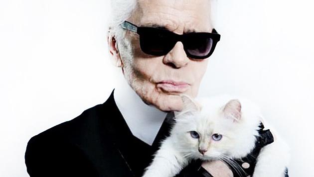 Karl Lagerfeld liebt seine Katze Choupette über alles. (Bild: facebook.com/MademoiselleChoupetteLagerfeld)