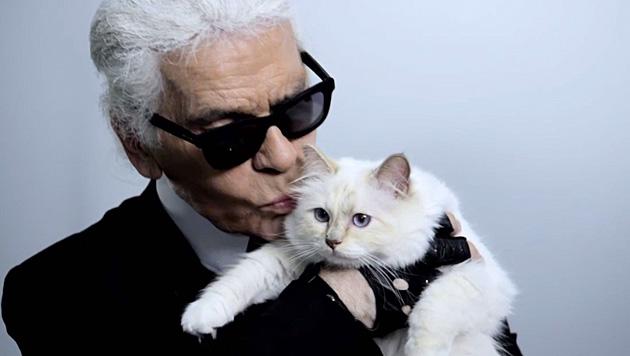 """Diese Liebe ist einzigartig: der Designer und seine Fashion-Cat """"Choupette"""" (Bild: facebook.com/MademoiselleChoupetteLagerfeld)"""