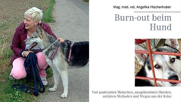 """Tierärztin: """"Menschen treiben Hunde ins Burn-out"""" (Bild: Angelika Hischenhuber)"""