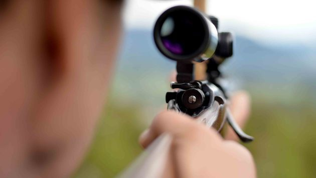 Serien-Wilderer schießt Sechsender-Rehbock in OÖ (Bild: APA/BARBARA GINDL)